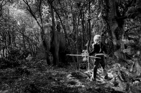 girl and elephant-